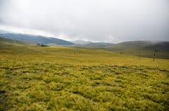 Het plateau van Bucegi Stock Foto's