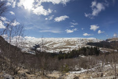 Het plateau van lago-Naki de Kaukasus Stock Fotografie
