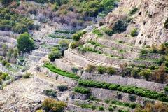 Het Plateau van Oman Saiq Royalty-vrije Stock Afbeeldingen