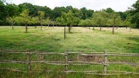 Het platteland Royalty-vrije Stock Afbeeldingen