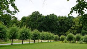 Het platteland in België Royalty-vrije Stock Foto's