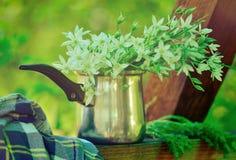 Het platteland bloeit boeket Stock Afbeeldingen