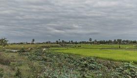 Het platteland dichtbij Siem oogst stad stock fotografie