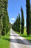 Het platteland van de Boerderij van Toscanië stock foto's