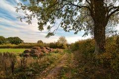 Het Platteland van de herfst Stock Afbeeldingen