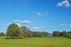 Het platteland van de lente Royalty-vrije Stock Foto's