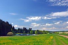 Het platteland van de zomer met vijver stock afbeeldingen