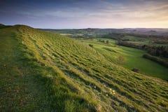 Het platteland van Dorset Stock Foto's