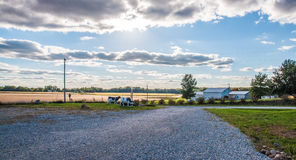 Het Platteland van Iowa Stock Foto