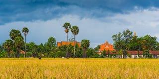 Het platteland van Kambodja Stock Foto