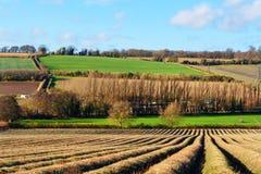 Het platteland van Kent Stock Foto