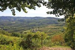 Het platteland van Kroatië van Isrtia Stock Foto's