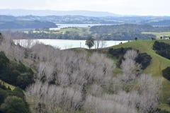Het platteland van Nieuw Zeeland in de winter stock foto