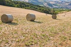 Het platteland van Romagna stock afbeeldingen