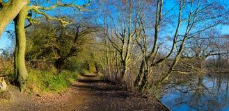 Het platteland van Surrey Royalty-vrije Stock Foto