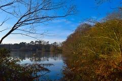 Het platteland van Surrey Royalty-vrije Stock Foto's