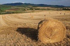 Het platteland van Toscanië Stock Foto