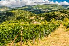 Het platteland van Toscanië Stock Afbeelding