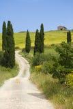 Het platteland van TOSCANIË, omslachtige straat met cipres Stock Afbeelding