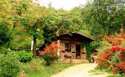 Het plattelandshuisje in de berg Stock Afbeeldingen
