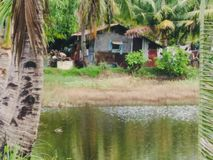 Het plattelandshuisje dichtbij de vijver stock fotografie