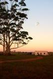 Het plattelandshuisje van arbeiders Royalty-vrije Stock Fotografie