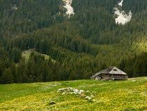 Het plattelandshuisje van de herder in Roemenië Royalty-vrije Stock Afbeeldingen