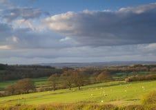 Het plattelandslandbouwgrond van Shropshire Stock Afbeeldingen