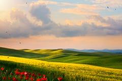 Het plattelandslandschap van Italië; zonsondergang over de heuvels van Toscanië royalty-vrije stock afbeelding