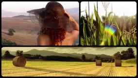 Het plattelandsleven stock videobeelden
