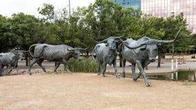Het Plein van de het Beeldhouwwerkpionier van de bronsjonge os, Dallas stock foto's
