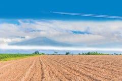 Het ploegen, bebouwing, het plukken, bebouwing, het planten, cultuur, voor landbouwgebied met de blauwe hemelwolk en stock fotografie