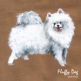 Het pluizige hond schilderen, groetkaart Stock Foto