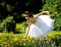 Het plukken bloemen Royalty-vrije Stock Foto
