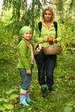 Het plukken van de moeder en van de dochter paddestoelen Royalty-vrije Stock Fotografie