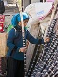Het plukken van de Vrouw van Hani Suikerriet Royalty-vrije Stock Foto's