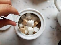 het plukken van een kubus van suiker van witte pot Stock Foto's
