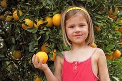 Het plukken van het meisje sinaasappelen Royalty-vrije Stock Afbeeldingen