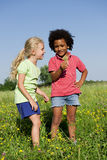 Het plukken van kinderen bloeit omhoog Royalty-vrije Stock Foto