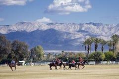 Het Polo van Gr Dorado Royalty-vrije Stock Foto's