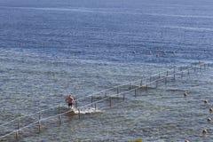 Het ponton voor gaat het overzees in Stock Foto