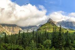 Het Poolse Tatra-landschap van de bergenzomer met blauwe hemel en witte wolken stock afbeeldingen