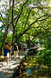 Het populaire nationale park van Krka met mensen die in Kroatië wandelen Stock Foto's