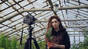 Het populaire wijfje blogger ervoer tuinman registreert video over het tuinieren voor haar vlog die zich in serre bevinden en stock videobeelden