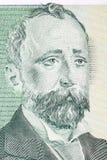 Het portret van Alekokonstantinov stock foto