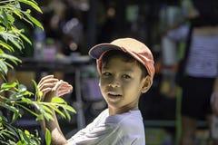 Het portret van Aziatische jongen die een rood GLB en een wit overhemd dragen is glimlach stock foto's