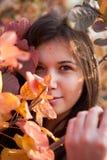 Het portret van bladeren Royalty-vrije Stock Fotografie