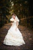 Het portret van de bruid Stock Afbeelding