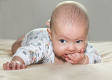Het portret van de close-up van mooie baby Stock Foto's
