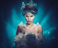 Het portret van de de fantasievrouw van de de winterschoonheid stock fotografie